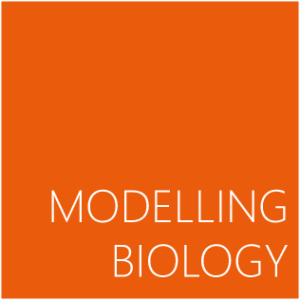 Published Modelling Biology – working through (in-)stabilities and frictions